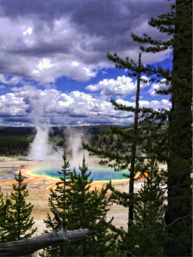 sp 1 yellowstone